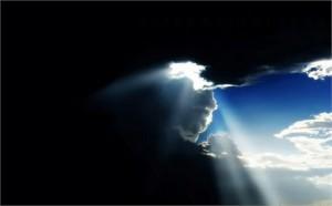 light reveals1